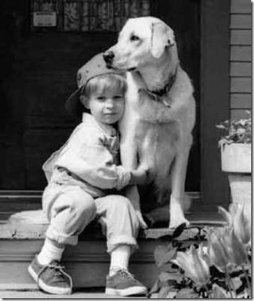 loyalty_rewards_dog