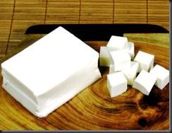 tahu-tofu