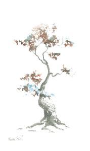 little-zen-tree-444-sean-seal
